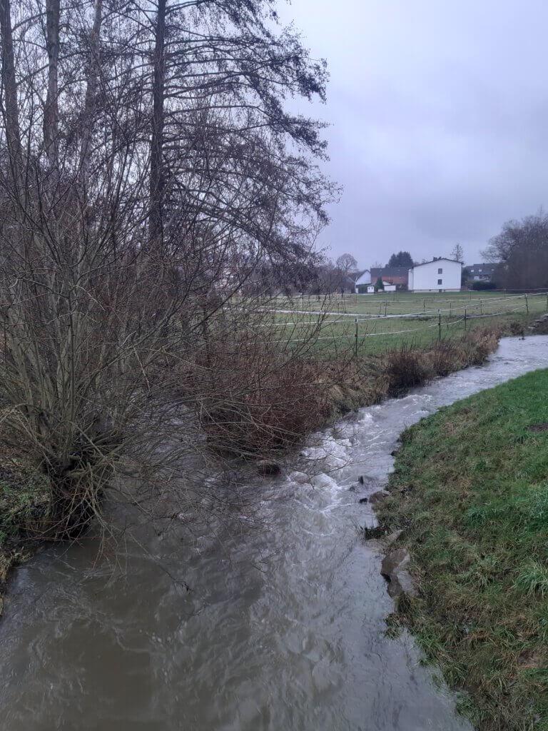 Die neue Mündung des Schlabach in die Emsbach, Dezember 2020